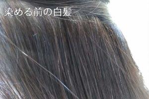 リライズで染める前の白髪