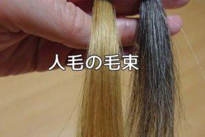 人毛の毛束