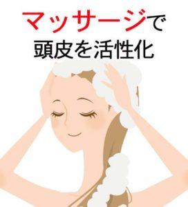 頭皮の活性化