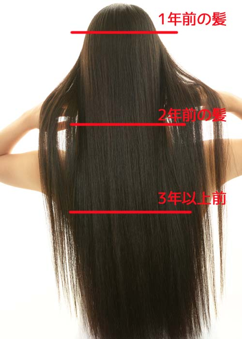 髪の健康チェック