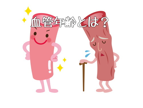 血管年齢とは