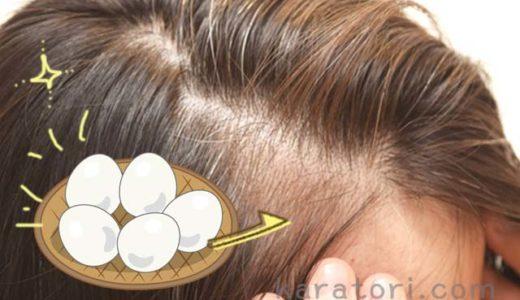 ゆで卵が髪を健康に?髪の悩みが改善できる卵の理想的な食べ方!