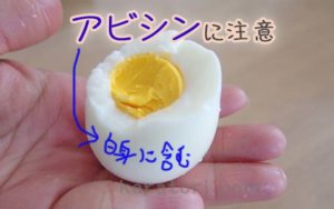 卵 アビシン