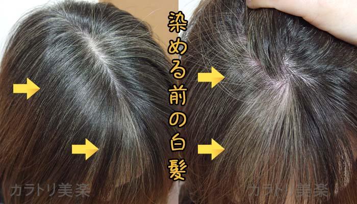 ルプルプで染める前の白髪