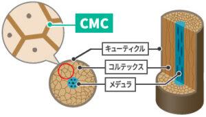 CMCリペア効果